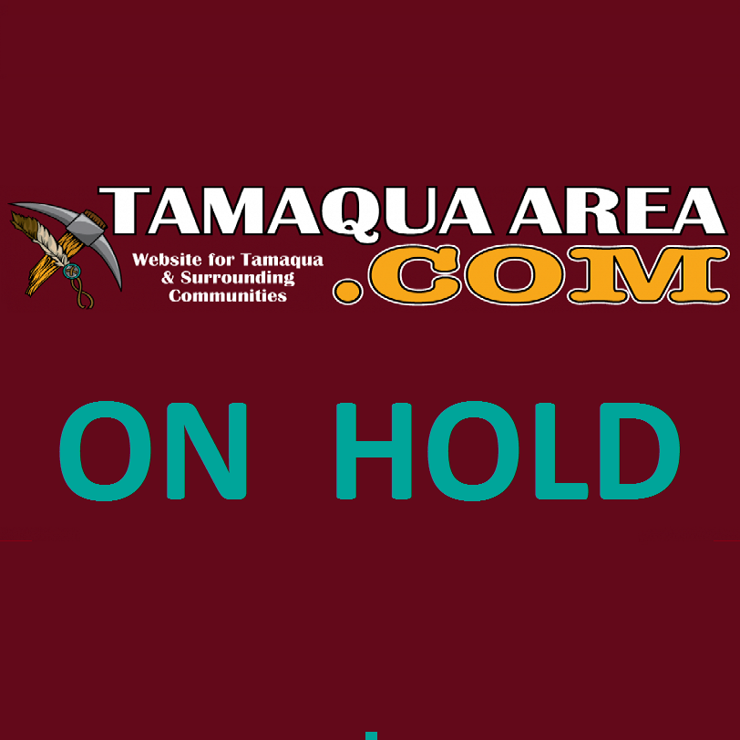TamaquaArea.com on hold temporarily