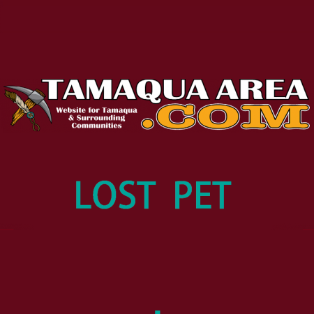 tamaquaarea-logo-lost-pet