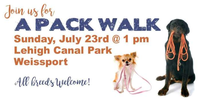 7-23-2017, A Pack Walk, Lehigh Canal Park, Weissport